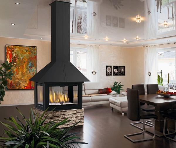 Foyer Au Grand Lancy : Foyers et poêles au bois gaz éthanol